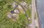 LOT 1100 Harbor View Drive, Rockaway Beach, OR 97136 - DJI_0294