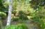 2695 SW Breakers Dr, Waldport, OR 97394 - Amazing Natural Landscaping