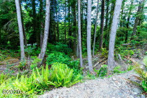 LOT 7 NE West Devils Lake Rd, Lincoln City, OR 97367 - Devils Lake Lot