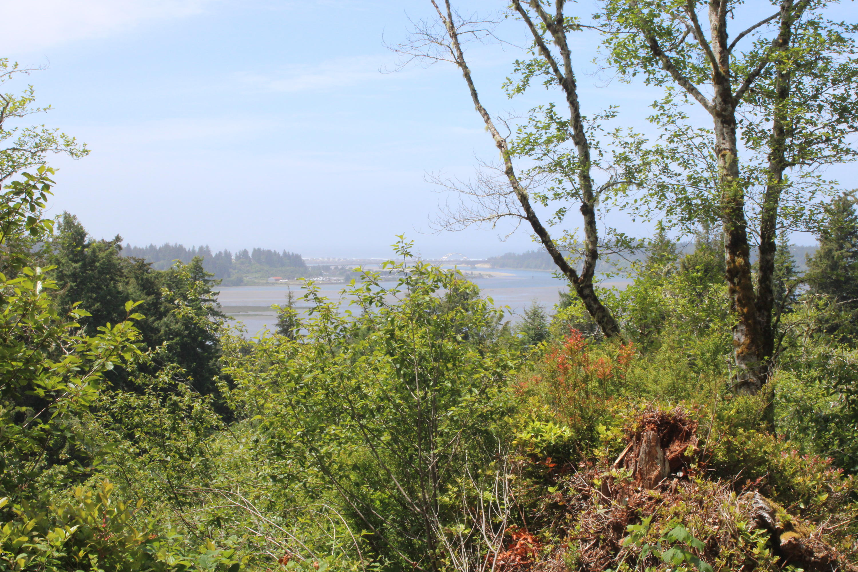 T/L1001 Bayview Ct., Waldport, OR 97394 - View from top of land.