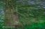 1770 Hamer Rd, Siletz, OR 97380 - 222 MLS Reduced 1770 Hamer Rd Siletz OR