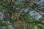 1770 Hamer Rd, Siletz, OR 97380 - 223 MLS Reduced 1770 Hamer Rd Siletz OR