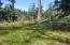LOT 7 Lotus Lake Dr, Waldport, OR 97394 - Lot