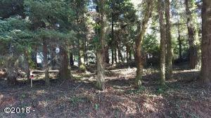 2400 BLK NE 36th Dr, Lincoln City, OR 97367 - View of Lot