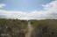 2013 NW Mackey St, Waldport, OR 97394 - Beach Trail