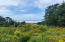 3455 SW Fernwood Lane, Waldport, OR 97394 - View from lot 1