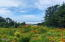 3455 SW Fernwood Lane, Waldport, OR 97394 - View from lot 2