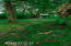 1770 Hamer Rd, Siletz, OR 97380 - 256 MLS Reduced 1770 Hamer Rd. Siletz OR