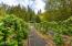 1266 N Yachats River Rd, Yachats, OR 97498 - Organis Berries