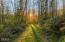 1266 N Yachats River Rd, Yachats, OR 97498 - Magical meadows