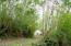 1266 N Yachats River Rd, Yachats, OR 97498 - Yurt
