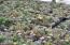 9724 Yachats River Rd, Yachats, OR 97498 - Huge Variety
