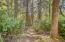 9414 SE Cedar St, South Beach, OR 97366 - Private Trail