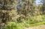 8385 NE Ridgecrest Ct, Otis, OR 97368 - Forest View #2 (1280x850)