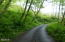 12909 Logsden Rd, Blodgett, OR 97326 - Driveway