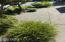 6225 N. Coast Hwy Lot 93, Newport, OR 97365 - IMG_1065