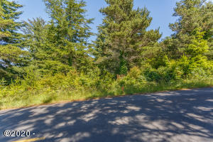TL 21 & 22 NE Waldport Heights Dr, Waldport, OR 97394 - -Print-10