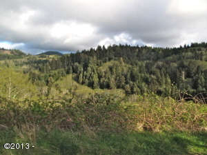 47100 Hillcrest Dr, Neskowin, OR 97149 - From Hillcrest