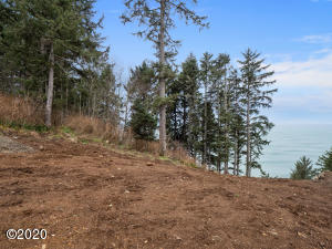 TL402 South Beach Rd, Neskowin, OR 97149 - From Street