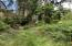 1421 NW Fircrest Ct, Waldport, OR 97394 - IMG_3836