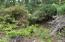 1421 NW Fircrest Ct, Waldport, OR 97394 - IMG_3857