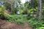 1421 NW Fircrest Ct, Waldport, OR 97394 - Drive