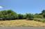 LOT 9700 Marine Drive, Yachats, OR 97498 - Buildable lot