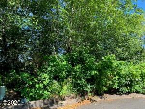 8500 NE Crestview Lane, Newport, OR 97365 - Hamrick Lot pic