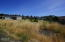 1909 NW Cunard St, Waldport, OR 97394 - West side of lot