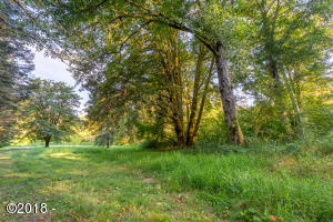 36555 Island Dr., Hebo, OR 97122 - Lot 20