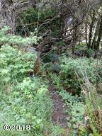 2942 BLK SW Anchor Ave, Lincoln City, OR 97367 - Path to Lot