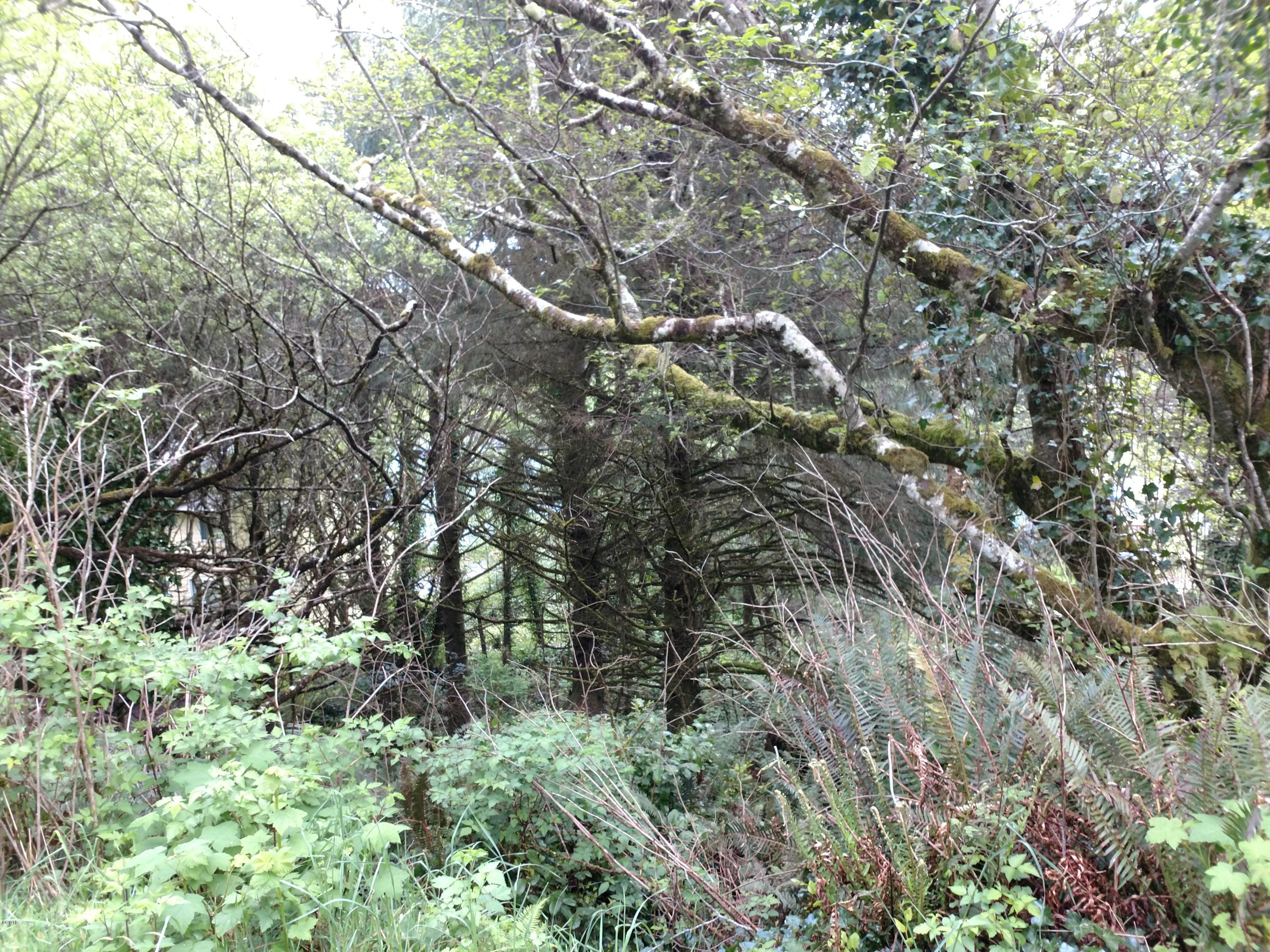 2982 BLK SW Anchor Ave, Lincoln City, OR 97367 - Lot