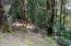 336 N Deer Hill Dr, Waldport, OR 97394 - IMG_0467