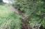 184 Olalla Rd, Toledo, OR 97391 - Creek