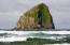 TL 9000 Kiwanda Drive, Pacific City, OR 97135 - Haystack Rock