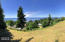 964 Hanley Drive, Yachats, OR 97498 - Panorama