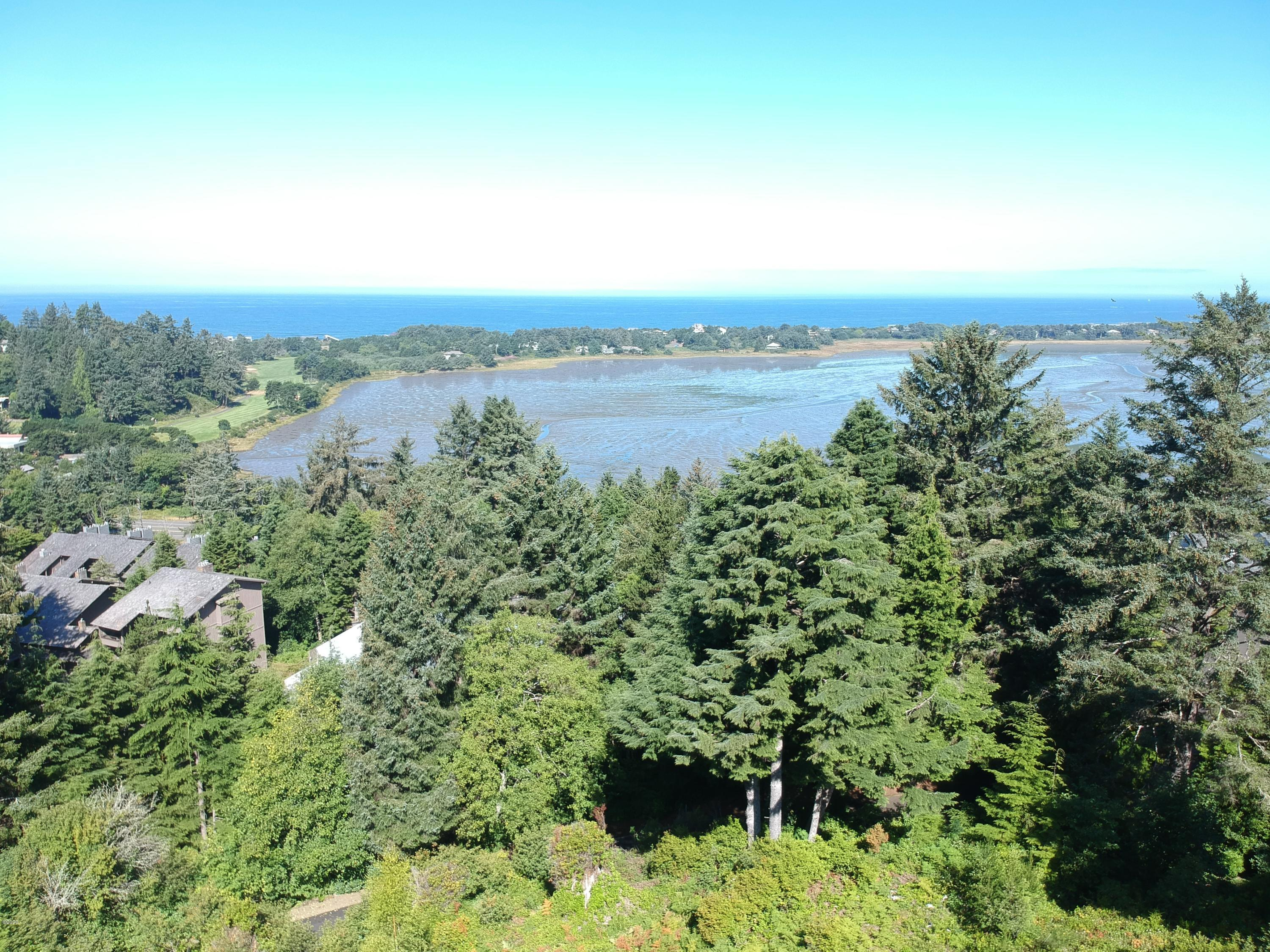 421 Surf View Dr, Gleneden Beach, OR 97388 - Skyview