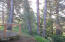 155 Spruce Ct, Depoe Bay, OR 97341 - IMG_1399 - Copy