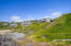 8566 NW Coast Rd, Seal Rock, OR 97376 - 61-The Cove