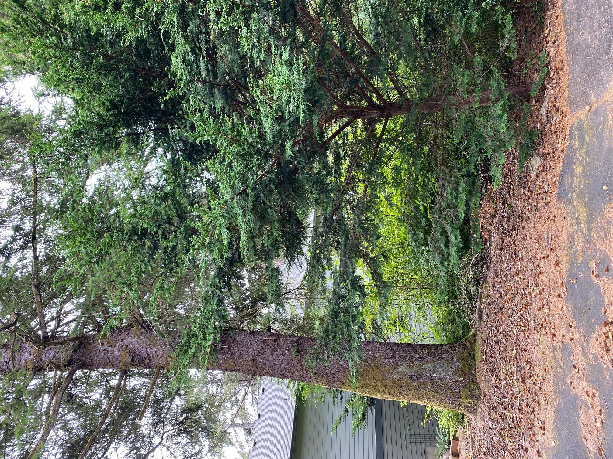 LOT 48 Se Hotspur Ln, Lincoln City, OR 97367 - Lot 48