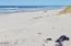 1305 NW Parker Ave, Waldport, OR 97394 - Ocean and Beach