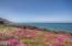 LOT 162 SW Cormorant, Depoe Bay, OR 97341 - Ocean front