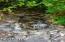 4558 SE Heron Loop, Lincoln City, OR 97367 - Waterfall 2