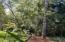 476 N Fawn Dr., Otis, OR 97368 - Overlooking Seasonal Spring Creek