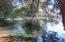 1834 Alsea Hwy, Waldport, OR 97394 - IMG_4404
