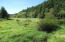 806 S Anderson Creek Rd, Lincoln City, OR 97367 - Creek Bottom Land