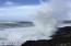 1 Woodthrush Ln, Gleneden Beach, OR 97388 - Ocean Depoe Bay