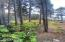 31 Surfside, Yachats, OR 97498 - North Property Line