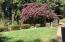 710 NW Terrace Dr, Toledo, OR 97391 - IMG_3920