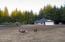 21430 Siletz Hwy, Siletz, OR 97380 - Fenced Pasture